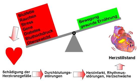 Ordination Dr Johann Auer Facharzt Fur Innere Medizin Und